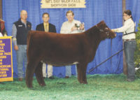 09-Grand-Female-MaxRosa-JordanCrall